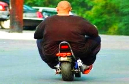 super-fat-man-on-a-scooter.jpg