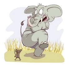 eger_elefant.jpg