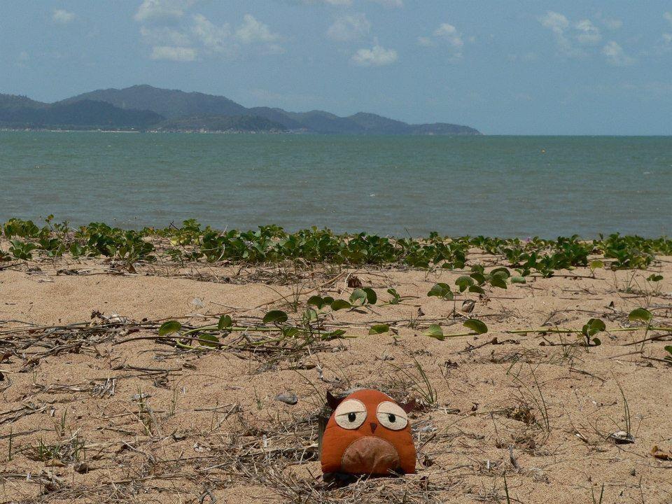 Rózi Ausztráliai utazásán először elvesztett, de aztán bevártam őt Sidneyben.