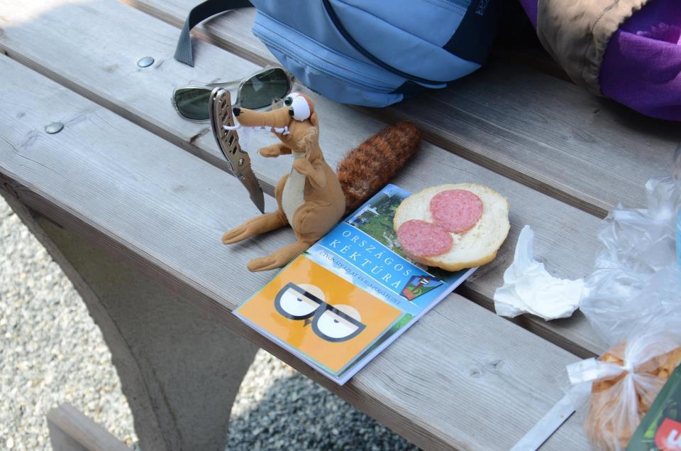Vera a Kéktúrára vitt szalámis szendvicset enni.