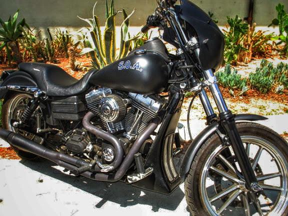 tigs_bike.jpg