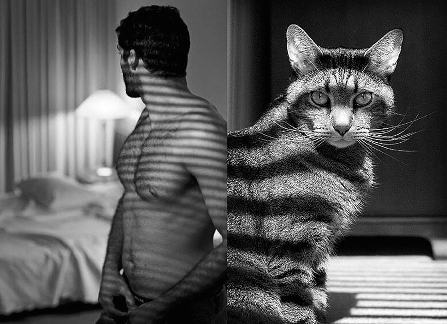 szexi-cicamicak-macsak-es_-szexi-pasik-cats-sexy-models-_14_.jpg