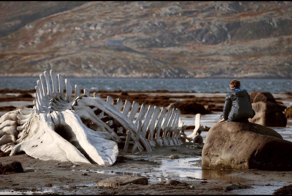 Leviathan 1.jpg