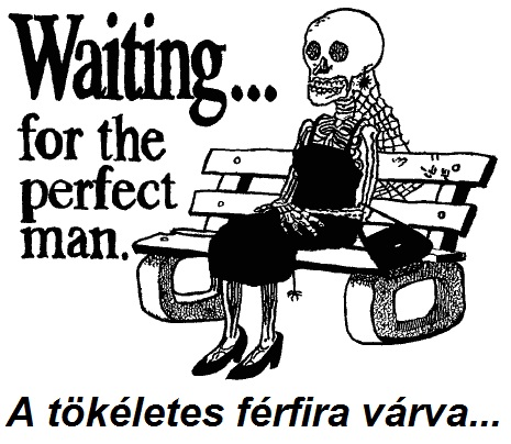 waiting_for_the_perfect.jpg