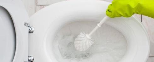 toilet-cleaning1.jpg