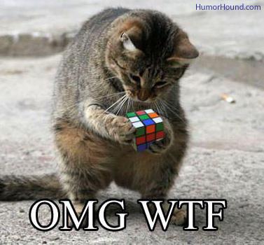 omg-wtf-cat-rubiks-cube.jpg