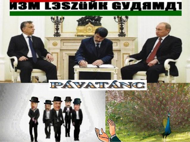 pvatnc-dance-peacock-1-638.jpg