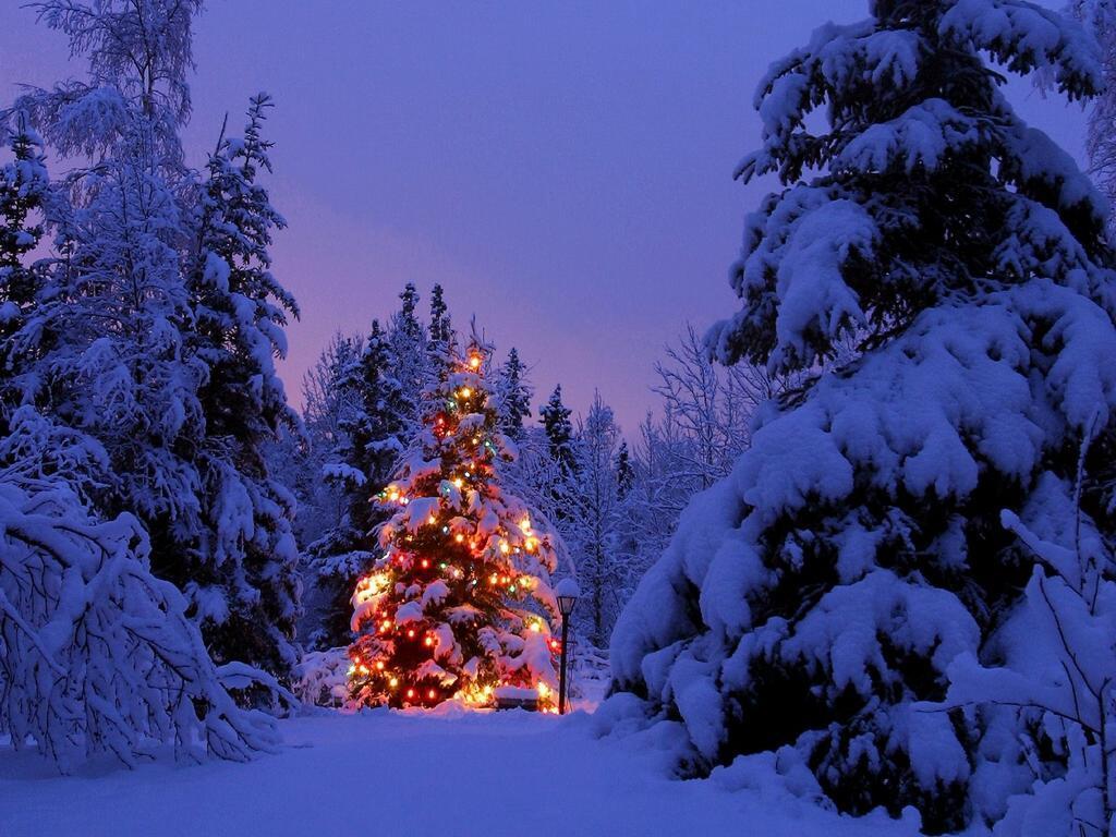 christmas-wallpaper-36.jpg