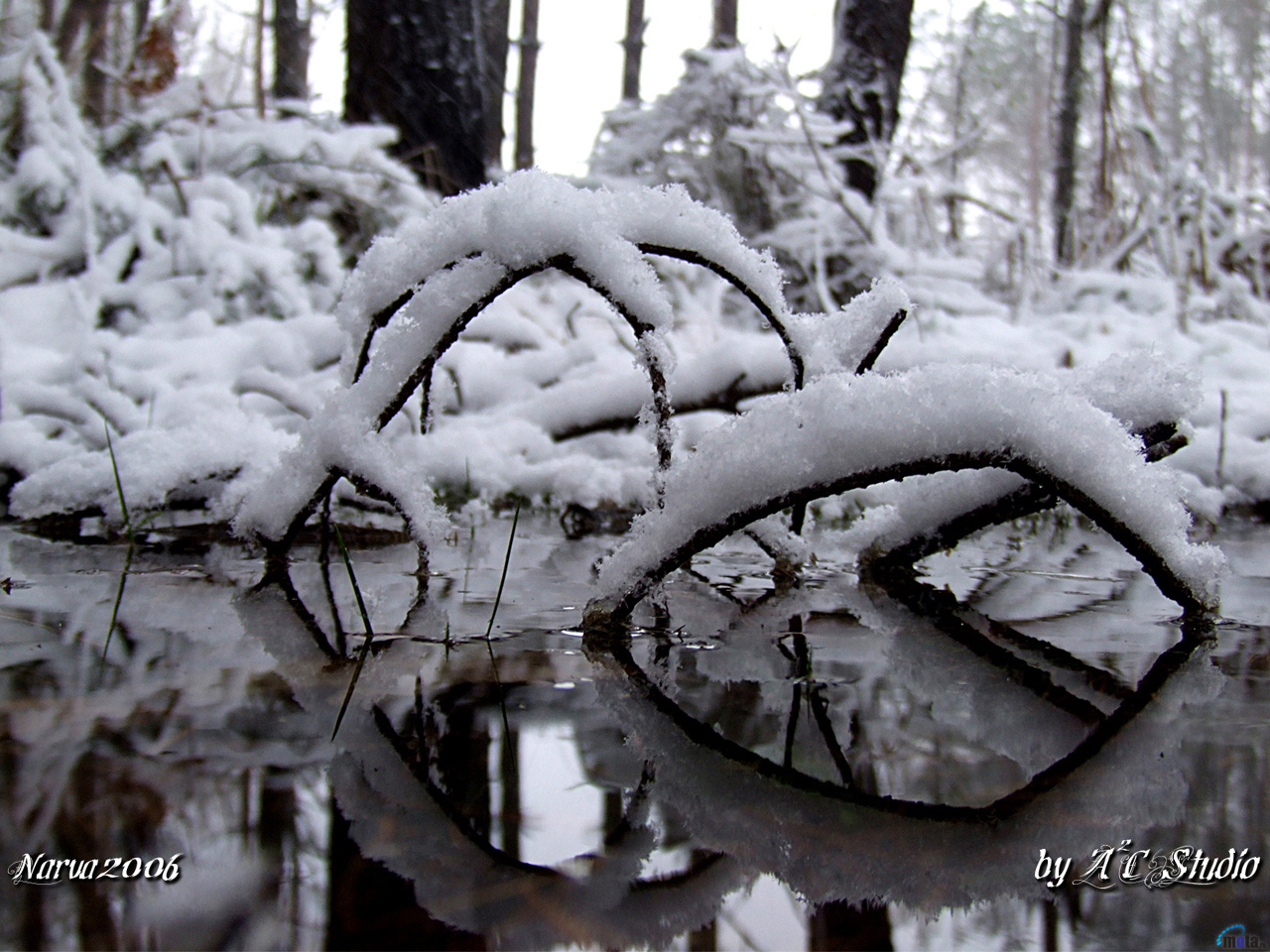 hielo-1280-x-960.jpg