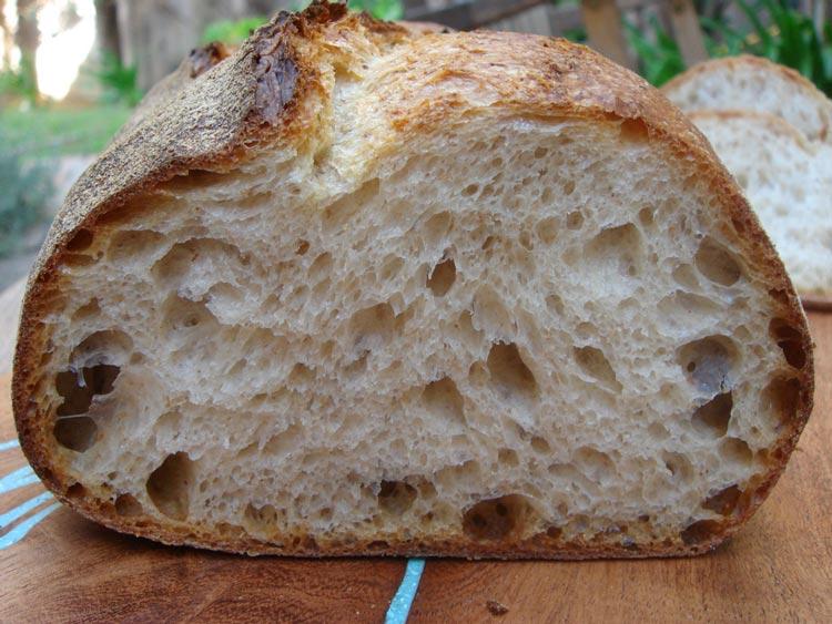 norwich-sourdough-crumb.jpg