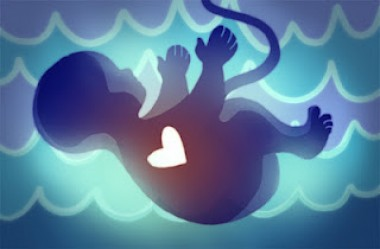 abortusz_baby.jpg