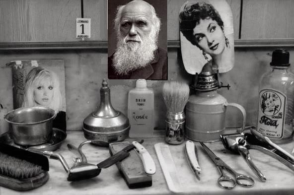 barbieri_sicilia_04.JPG