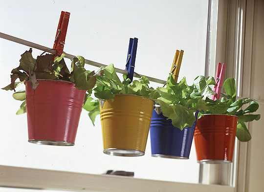 container-gardening-ideas.jpg