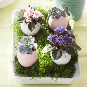 easter-egg-flower-pot.jpg