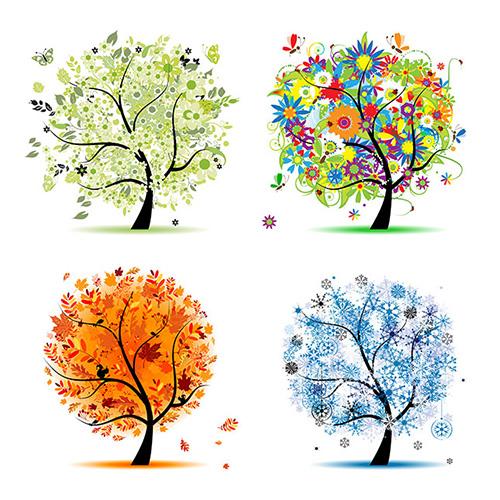 20130402-szita-tree.jpg