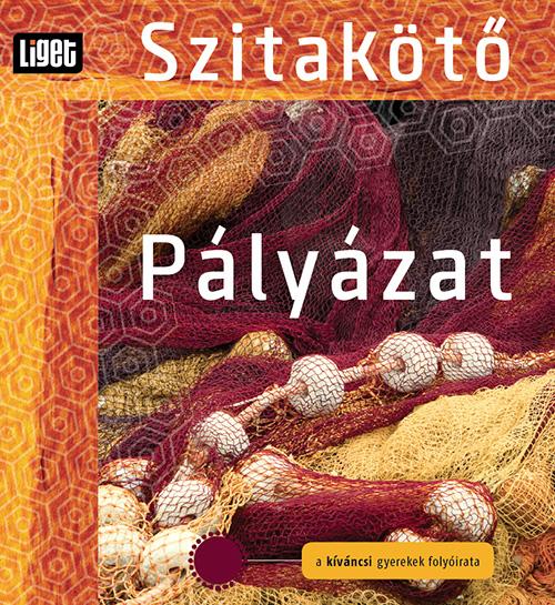 palyazat-2013-14.jpg