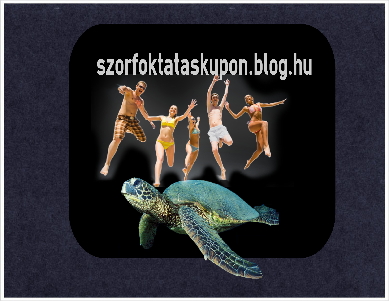 szorf_oktatas_siofok.jpg