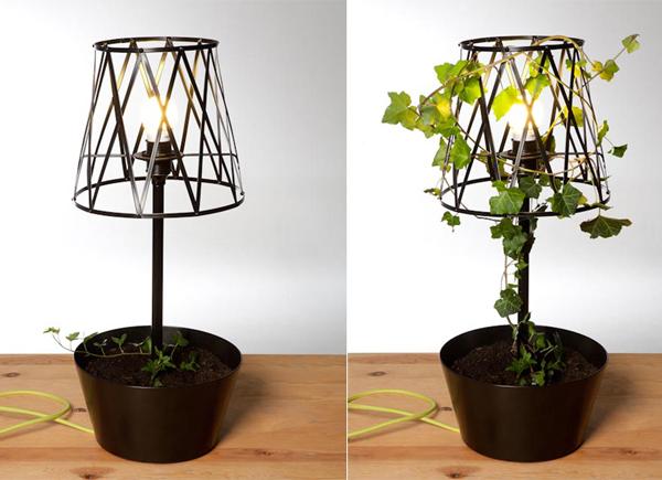 5-plant-friendly-lamp-designs-2.jpg