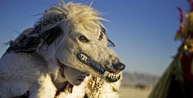Mad Dog-L.jpg