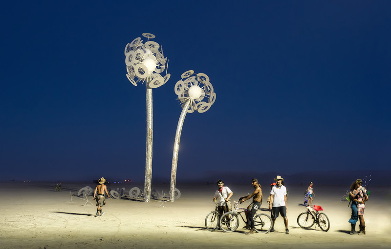 The Lily White Flowers of Burning Man-L.jpg