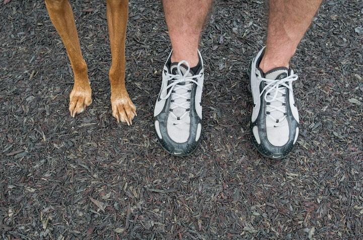 feetsandpaws011.jpg