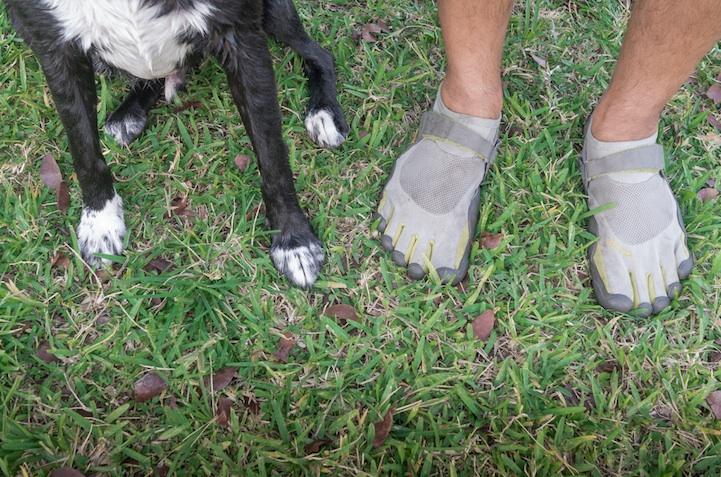 feetsandpaws05.jpg