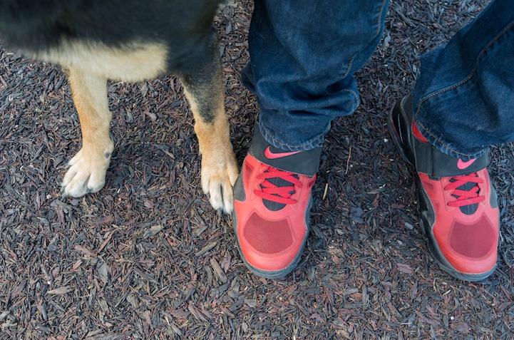 feetsandpaws07.jpg