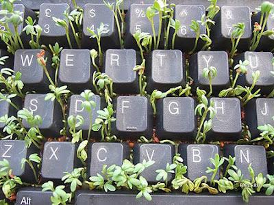keyboard-art-fun-DIY-amazing-artistic-recycling-recycle-reuse-remade-gadgets-frame-photo-book-organizer-box-garden-tictactoe_(11)_large.jpg