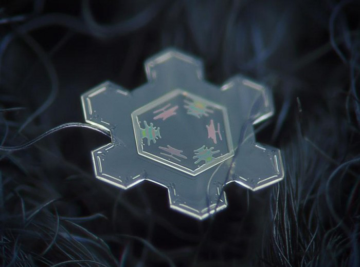 macro-photography-snowflakes-alexey-kljatov-12.jpg
