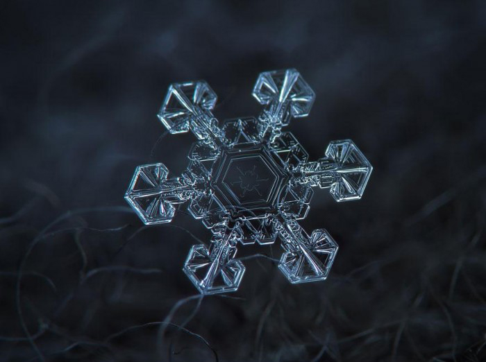 macro-photography-snowflakes-alexey-kljatov-5.jpg