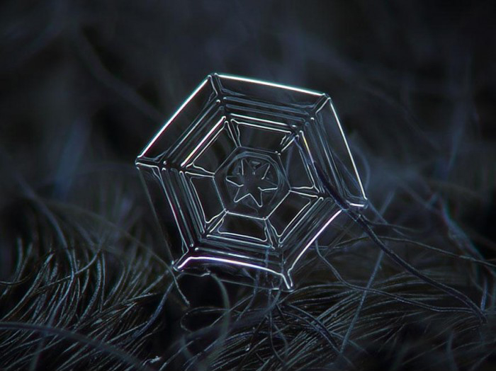 macro-photography-snowflakes-alexey-kljatov-7.jpg