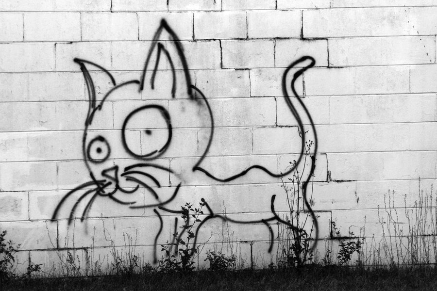 Graffiti_Cat_by_silent__propaganda.jpg