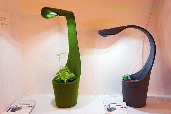 plant-growing-dino-lamp_6eqWD_58.jpg
