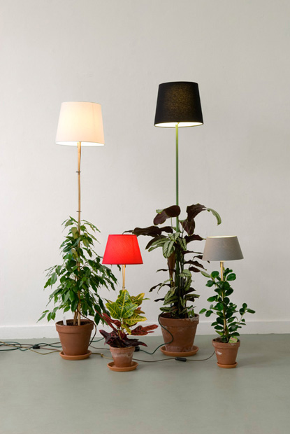 plant-lamp-01.jpg