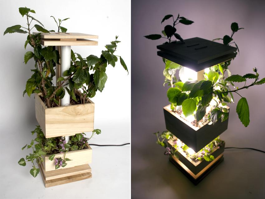 plantlamp02.jpg