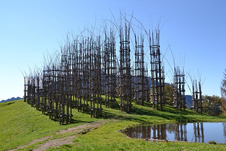 tree-cathedral-7[6].jpg