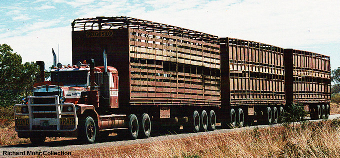cattle_road_train.jpg