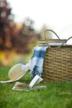 piknik_cikk_elejere.jpg
