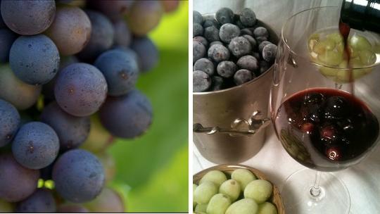 Fagyasztott szőlő.jpg