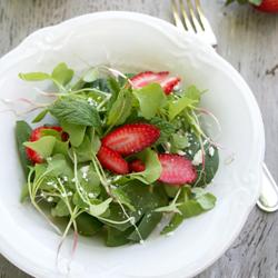 retekcsira salata.jpg
