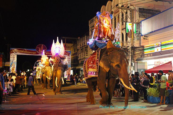 surin_elephant.jpg
