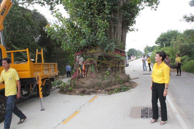 sacred_tree.jpg