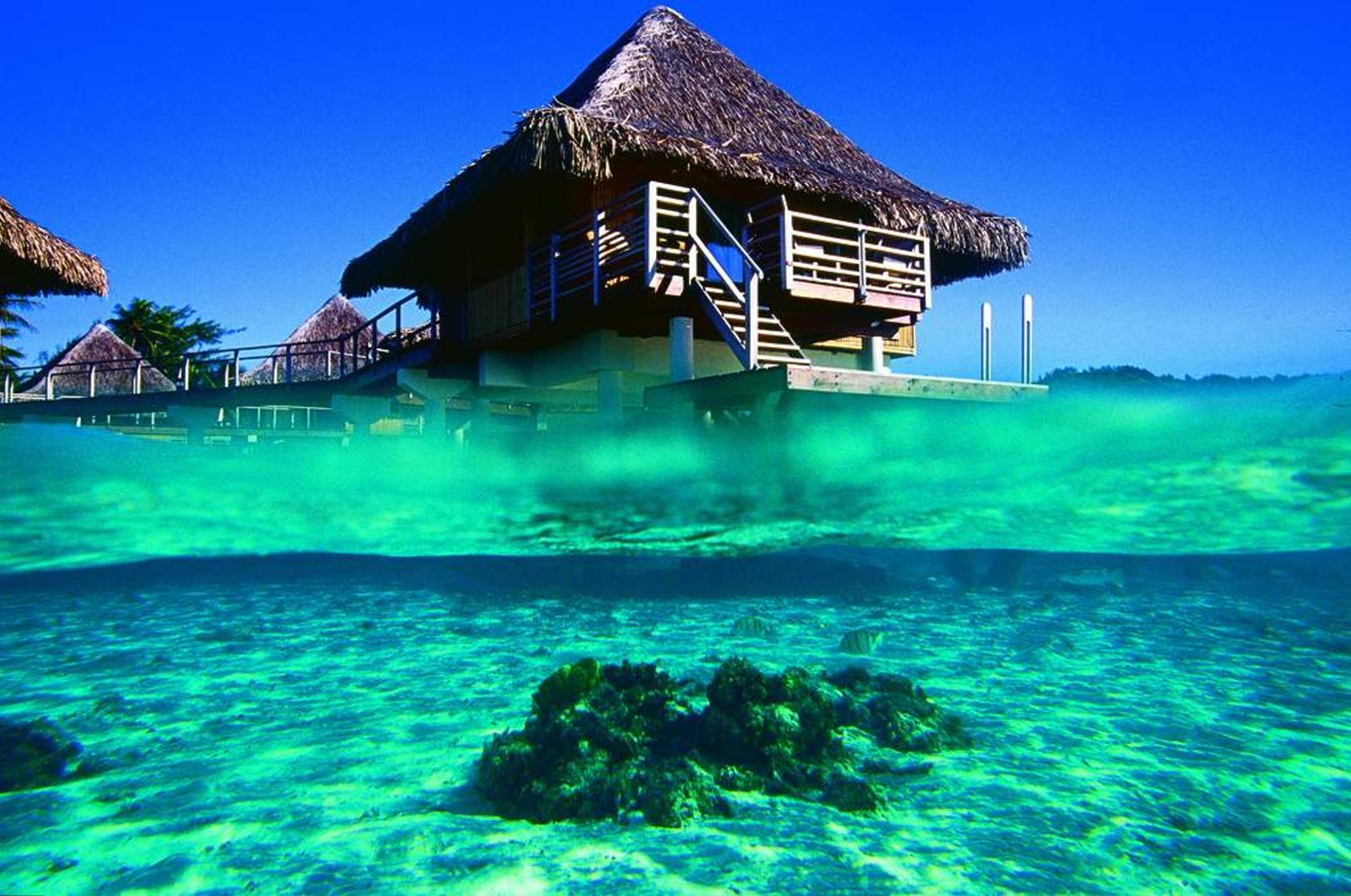 french-polynesia-4.jpg