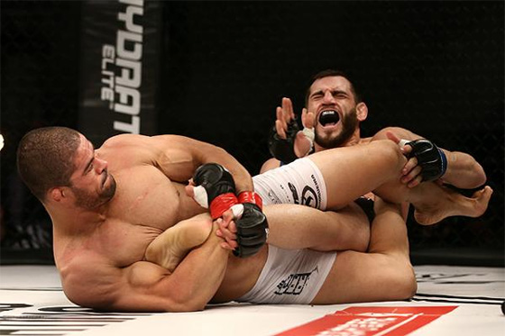 palhares-fitch.jpg