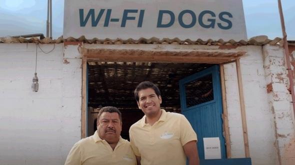 wifidogs.jpg