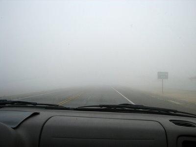 car fog2.JPG