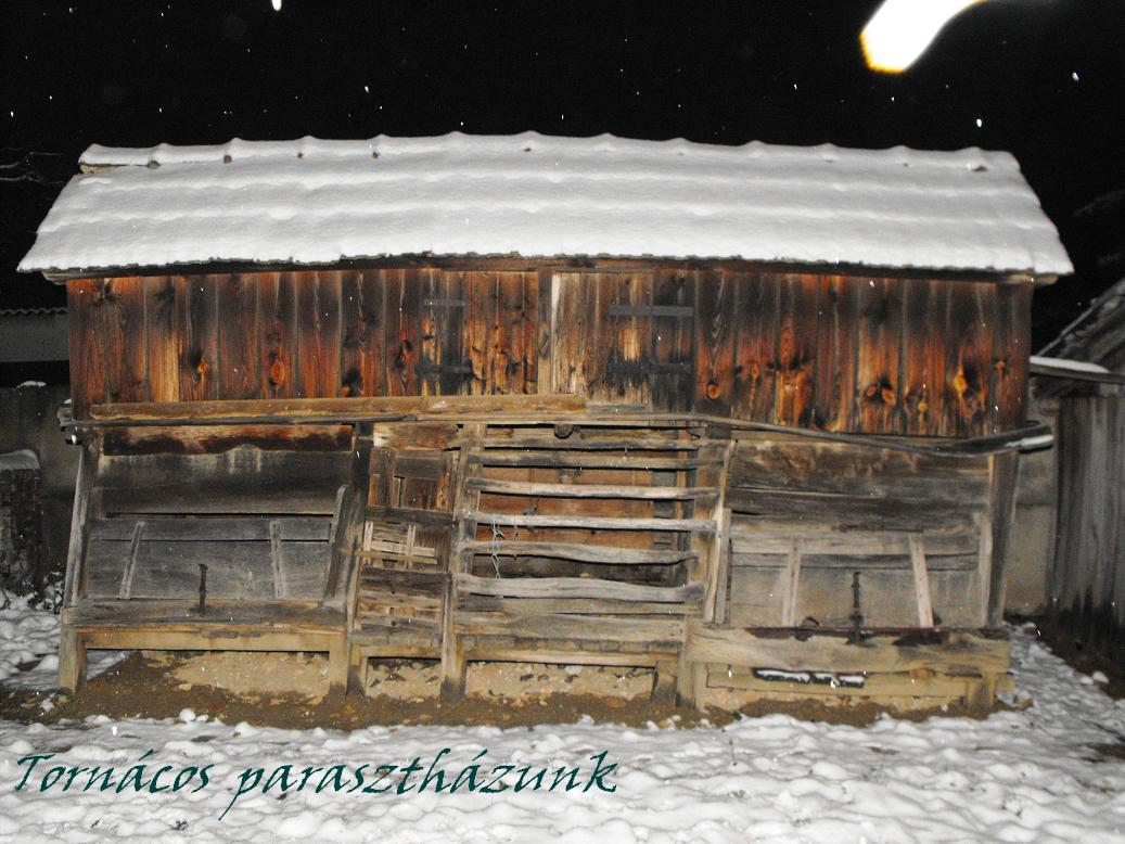 Tél a mezőn 2013 Jan 077.jpg