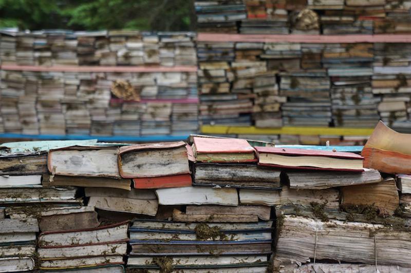 Pusztuló könyvek a Tudás Kertjében  - a könyvrohasztás  esete a junkkultúrával