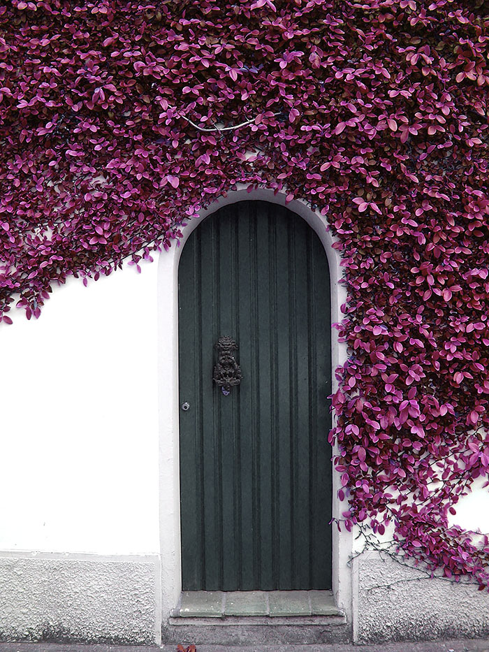 amazing-old-vintage-doors-photography-5.jpg