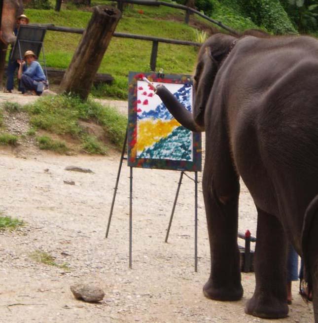 festo-elefantok-1.jpg